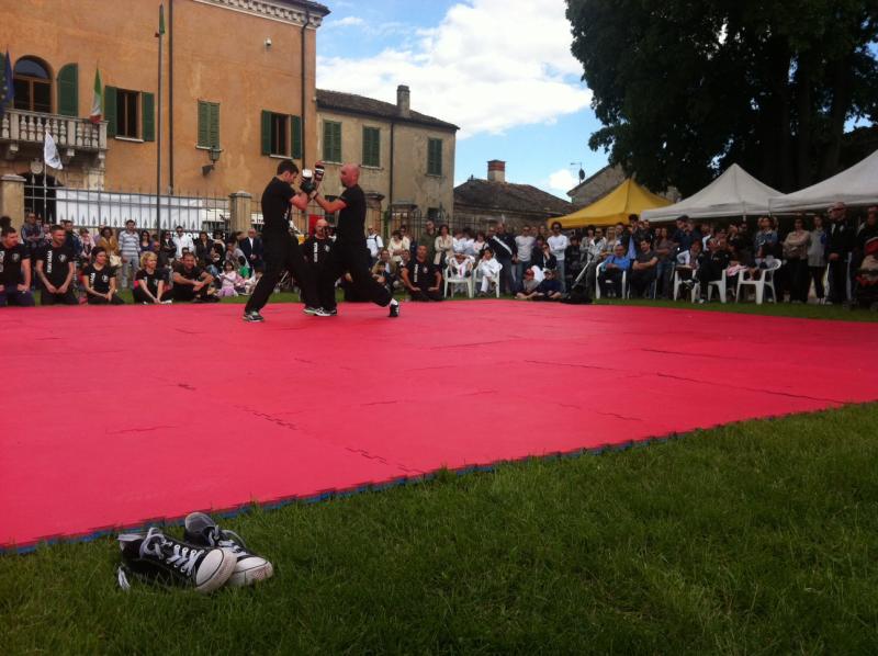 Scattolon Raffaella_foto-100